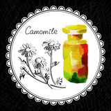 Camomile. Health and Nature Collection. Aromatic camomile oil (watercolor and graphic illustration Stock Images