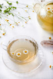 Camomile hebal tea in a white cup with Royalty Free Stock Photo