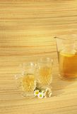 Camomile herbal tea Stock Images