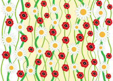Camomile_and_poppy_background Stock Photos
