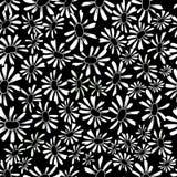 Camomile seamless pattern Royalty Free Stock Photo