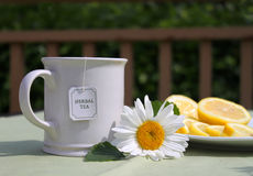 Camomile tea. A cup of tea with lemon and camomile flower Royalty Free Stock Photos
