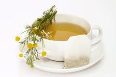 Camomile tea Royalty Free Stock Photo