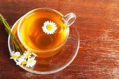 Camomile tea Royalty Free Stock Image