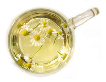 Camomile tea Stock Images