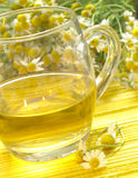 Camomile tea Stock Photography