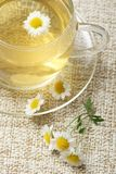 Camomile tea Stock Photo