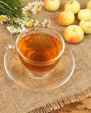 Camomile tea and apples Royalty Free Stock Photography