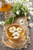 Camomile tea and bouquet of flowers Royalty Free Stock Photos