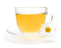 Camomile tea with chamomile flower isolated on white Royalty Free Stock Photos