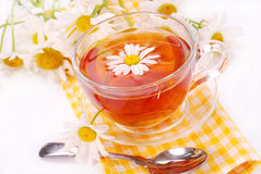 Camomile tea in glass Stock Images