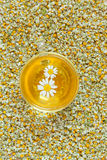 Camomile tea natural herbal organic beverage in Stock Image