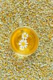 Camomile tea natural herbal organic beverage in Stock Image
