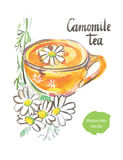 Camomile tea Stock Images