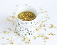 Camomile tea on white. Background Stock Image