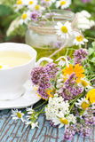 Camomile tea Royalty Free Stock Photos