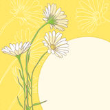 Camomiles. Cute camomiles on yellow background Stock Photography