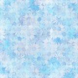 Camomiles bleus Photo stock