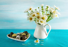 Camomiles and chocolates. Stock Image