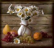 Camomiles et raisins Photographie stock libre de droits