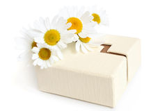 Camomiles and gift box Royalty Free Stock Photos