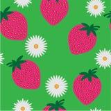 camomiles mönsan den seamless jordgubben royaltyfri illustrationer