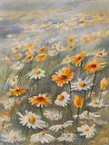 Camomiles meadow watercolor. Watercolor background with camomile meadow. Summer bloom Stock Image