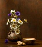 camomiles mjölkar Royaltyfria Bilder