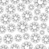 Camomiles Seamless Pattern Stock Photos