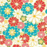 Camomiles seamless pattern background Stock Image