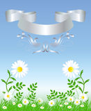 Camomiles with silver ribbon. Camomiles with green grass and silver ribbon Stock Images
