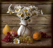 Camomiles y uvas Fotografía de archivo libre de regalías