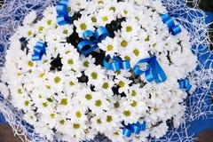 Camomilla in grande mazzo con i nastri blu Fiori Fotografia Stock