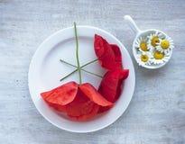 Camomille et pavot dans le petit plat sur les plats de porcelaine Image libre de droits