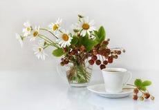 Camomille, fraise et une tasse de café. Images libres de droits