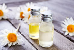 Camomille oil Stock Photography