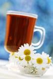 Camomille tea stock photo
