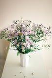 Camomille Wildflowers dans un verre photographie stock libre de droits