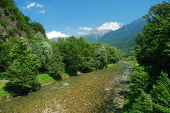 Camonica valley, river Oglio, Lombardy, Italy. View of the river Oglio, Camonica valley, Lombardy, Italy. Lush woods on the river banks royalty free stock images