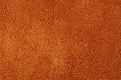 Camoscio rosso Fotografia Stock