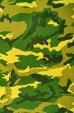 Camouflage Images libres de droits