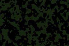 Camouflage. Green and black color Royalty Free Stock Images