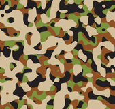 Camouflage. Stock Images