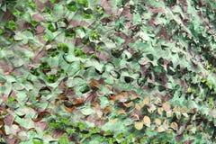 Camouflage Camp scene Royalty Free Stock Photo