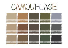 Camouflage Color Tone with Name Vector Royalty Free Stock Photos