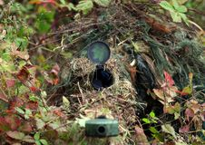 Camouflage Hunter or soldier hiding in bushes in camouflage. Autumn  background. Sniper with rifle Royalty Free Stock Photos