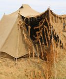 Camouflage military tent in the camp of training of army recruit Royalty Free Stock Photo