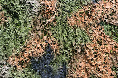 Camouflage net Royalty Free Stock Image