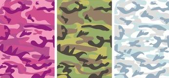 Camouflage : Rose de charme, neige de l'hiver, F classique Photo libre de droits