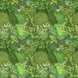 Camouflage seamless background with natural foliage Stock Photography